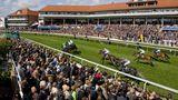 Holiday Inn Express Racecourse Recreation