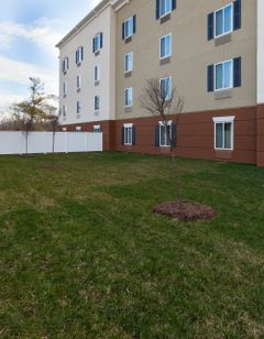 Candlewood Suites NE Downtown