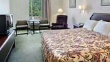 Gray Inn and Suites by Magnuson Room