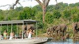 Chobe Chilwero Lodge Recreation
