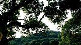 Hillview Dongguan Golf Resort Golf