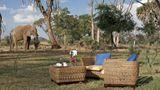 Ashnil Samburu Camp Exterior