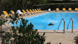 Hotel De la Plage Pool