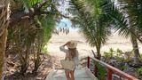 Sheraton Grand Mirage Resort Port Douglas Beach