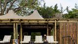 Xigera Safari Lodge Pool