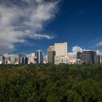Hyatt Regency Mexico City