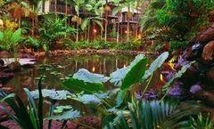Daintree Eco Lodge & Spa