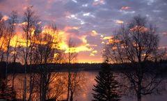 Anchorage Lakeside Jewel Bed & Breakfast