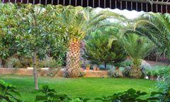 Palm Court Suites Hotel, Ayvalik