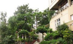 Sinclairs Hotel Darjeeling