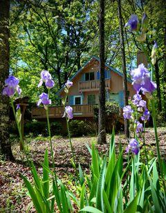 Pine Mountain Club Chalets
