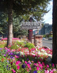 Stardust Tahoe