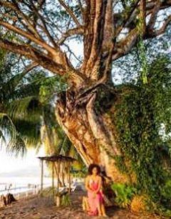 Picard Beach Cottage Resort