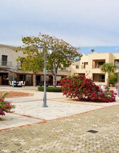 Ancora Punta Cana