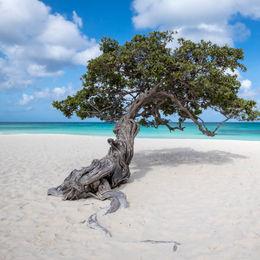 Caribbean Southern Cruises