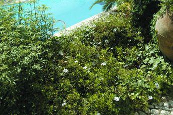 Pavezzo Country Retreat