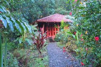 Playa Nicuesa Rainforest Lodge