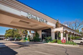Best Western Plus Black Oak