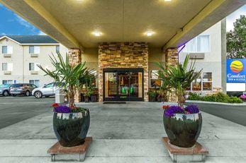 Comfort Inn & Suites, Fortuna