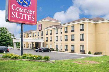 Comfort Suites Vestal
