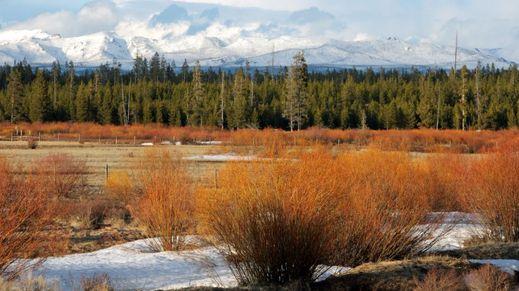 West Yellowstone, Montana