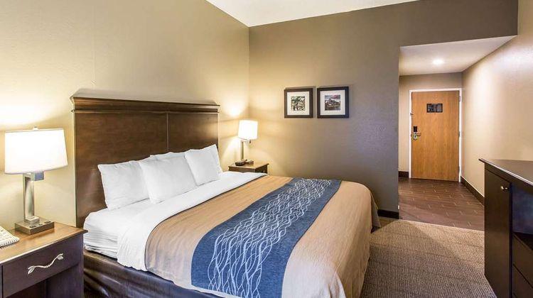 Comfort Inn & Suites Room