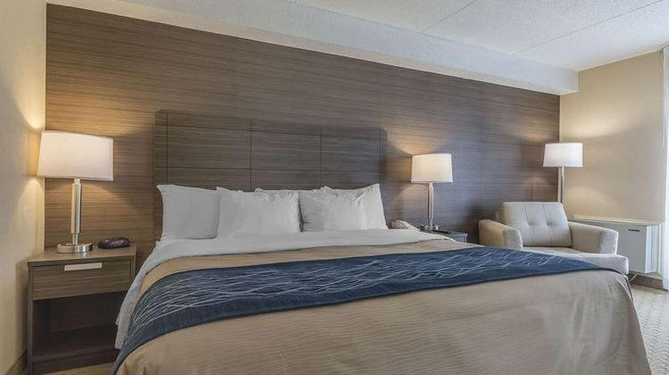 Comfort Inn Levis Room