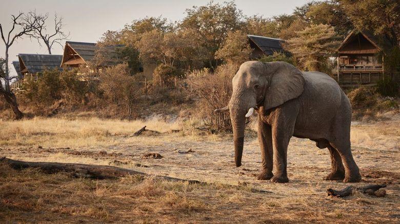 Savute Elephant Lodge, a Belmond Safari Exterior