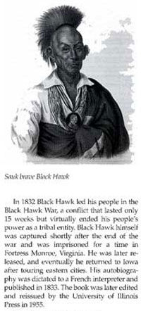 Picture of Black Hawk
