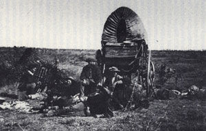 Picture of Buffalo Camp on the Plains