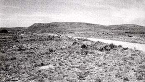 Picture of Custard's Wagon Train