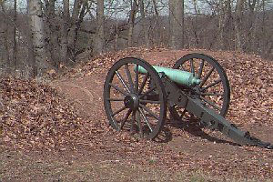 Picture of Cannon at Fort Marcy