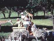 Fossil Rim Wildlife Park Picture
