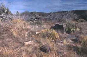 Picture of Remains at Camp Hualpai