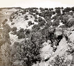 Picture of Massacre Rocks