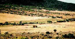 Picture of Mountain Meadows Massacre Site