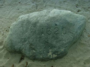 Picture of Plymouth Rock