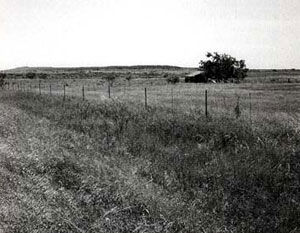 Picture of Salt Creek Prairie Fight Site
