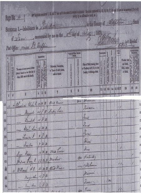 1870 Stephens County Census