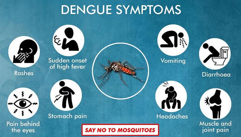 dengue sumptoms