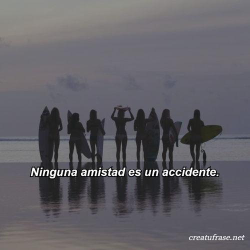 Frases de Amistad - Ninguna amistad es un accidente.