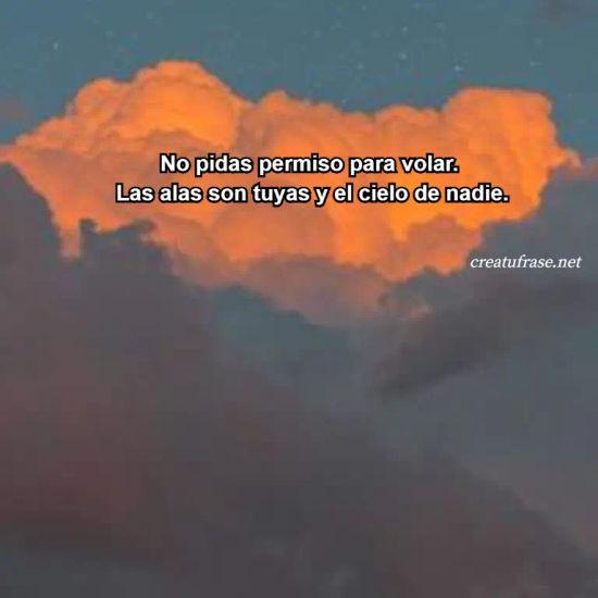 Imágenes de la frase: No pidas permiso para volar.  Las alas son tuyas y el cielo de nadie.