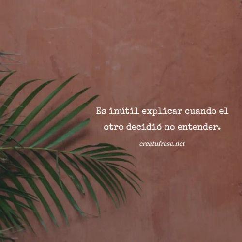Frases para Reflexionar - Es inútil explicar cuando el otro decidió no entender.