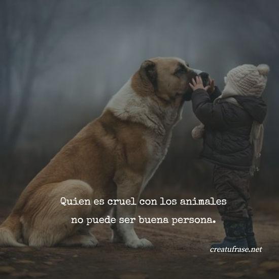 Quien es cruel con los animales no puede ser buena persona.