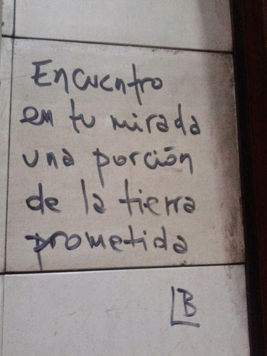 Frases de Acción Poética en Español (Latinoamericana) - Encuentro en tu mirada una porción de la tierra prometida.