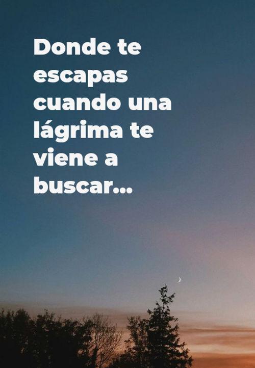 Frases sobre Pensamientos - Donde te escapas cuando una lágrima te viene a buscar...