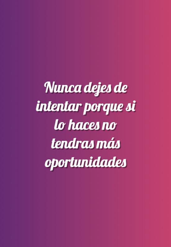 Imágenes de la frase: Nunca dejes de intentar porque si lo haces no tendras más oportunidades