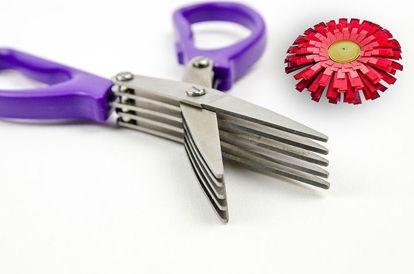 Picture of Fringing Scissors