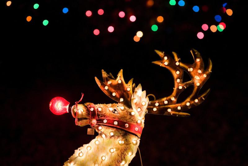 Rudolph_flickr_Thomas Hawk