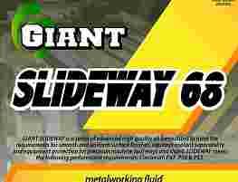 GIANT SLIDEWAY 68
